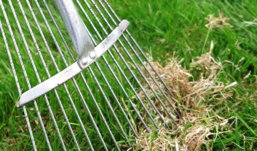 Dethatching Services at Plymouth Lawncare